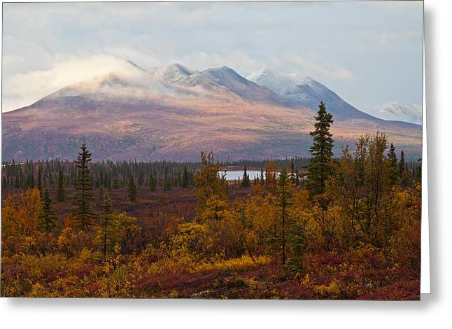 Fall Colors Of Alaska Greeting Card