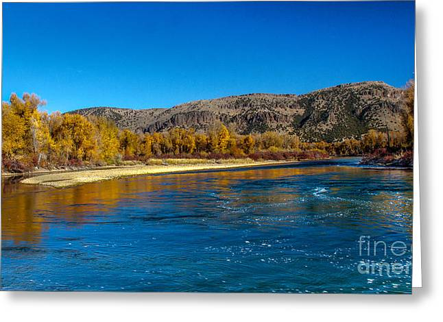 Fall Colors On The Snake River Greeting Card by Robert Bales
