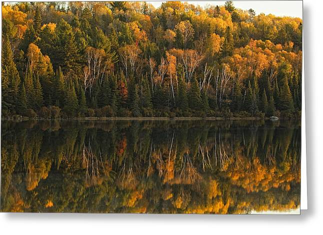 Fall Colors Reflected In The Waters Greeting Card by Robert Postma