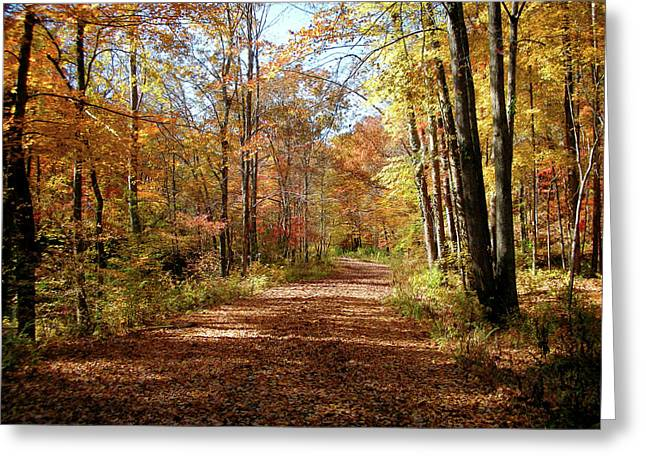 Greeting Card featuring the photograph Fall Coming On by Paul Mashburn