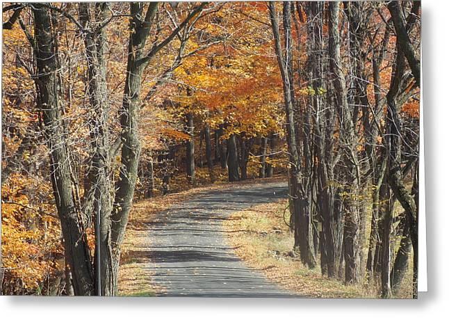 Fall Country Road Greeting Card by Angelika MacDonald