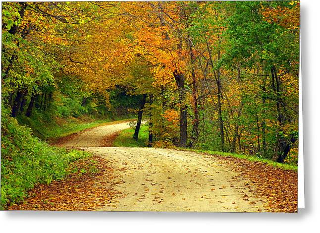 Fall Curves Greeting Card by Susan Camden