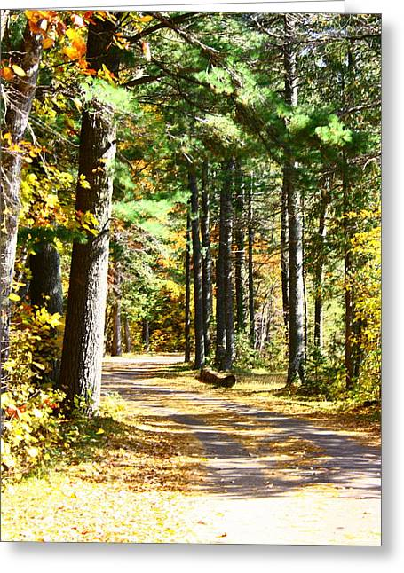 Greeting Card featuring the photograph Fall Day To Remember by Paula Brown