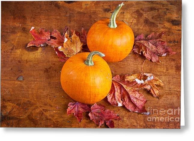 Fall Decorative Pumpkins Greeting Card by Verena Matthew