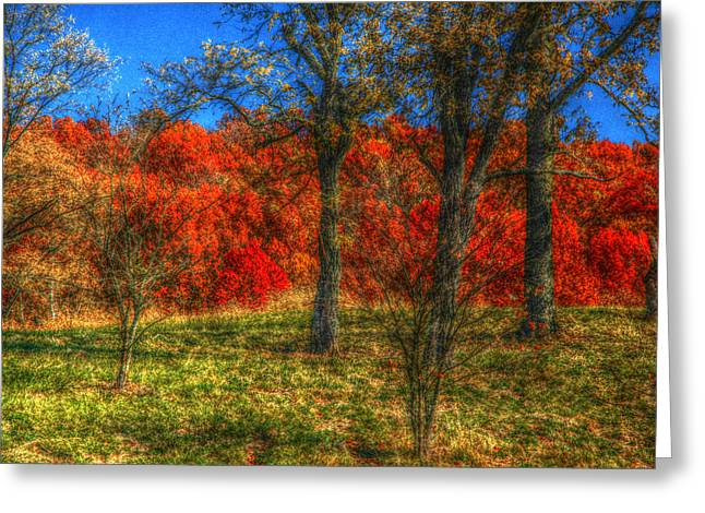 Fall Foliage Greeting Card by Ronald T Williams