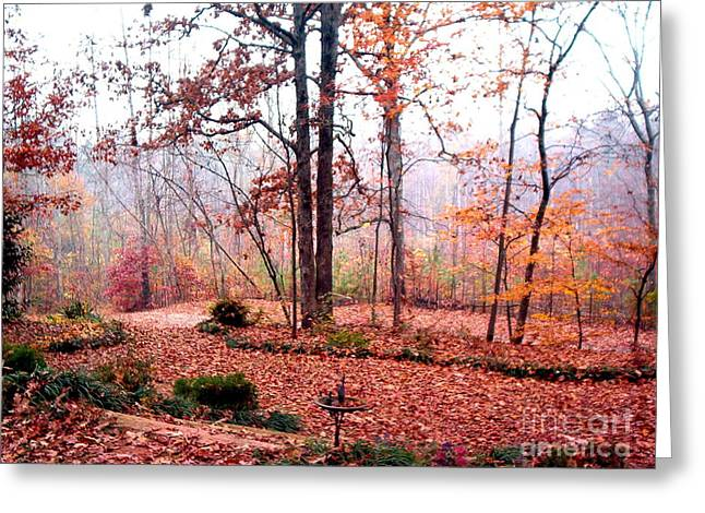Greeting Card featuring the photograph Fall by Gretchen Allen