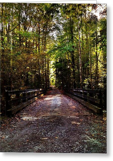 Greeting Card featuring the photograph Fall Hiking Trail by Janice Spivey
