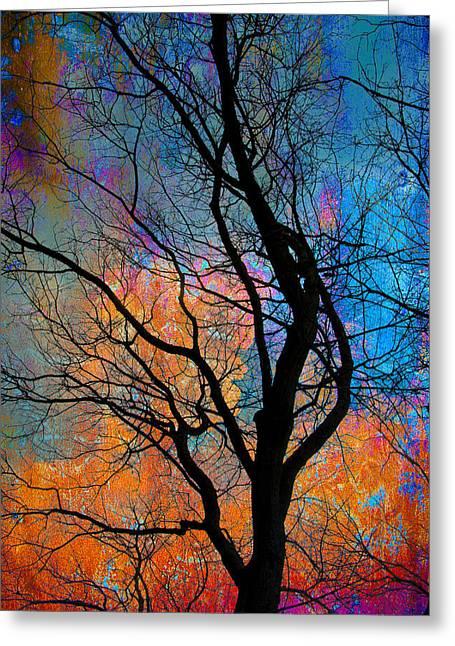 Fall Magic Greeting Card by David Clanton