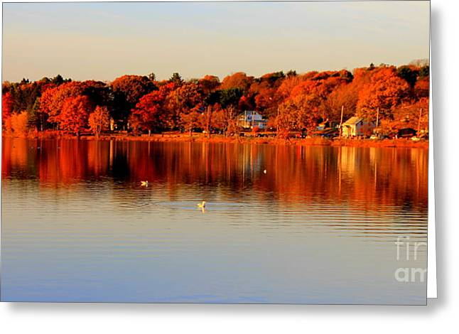 Fall On Horn Pond Greeting Card