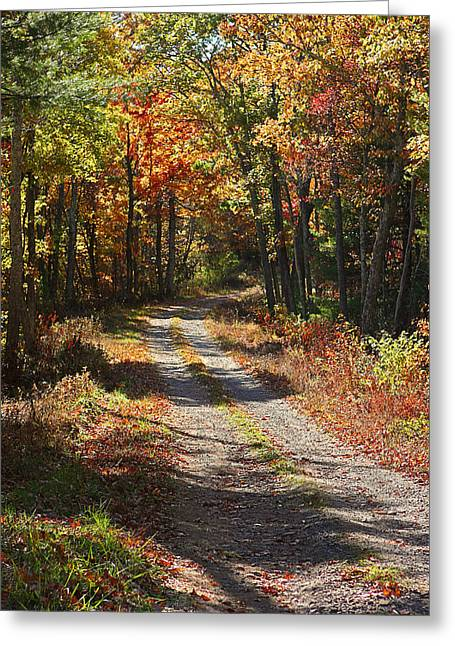 Fall On The Wyrick Trail Greeting Card