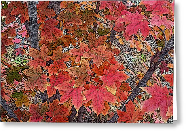 Fall Red Greeting Card by David Pantuso