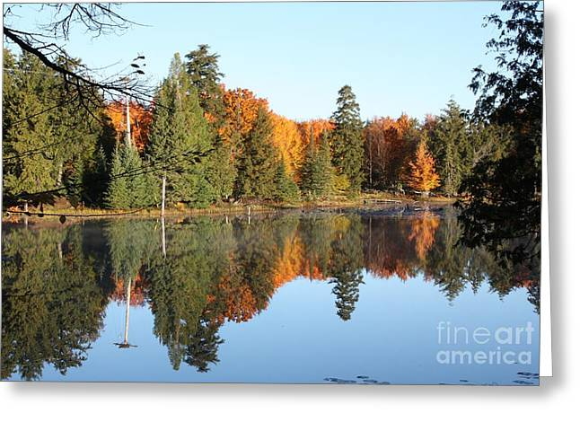 Fall Reflections Greeting Card by Dave Knoll