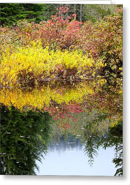 Greeting Card featuring the photograph Fall Reflections by Sylvia Hart