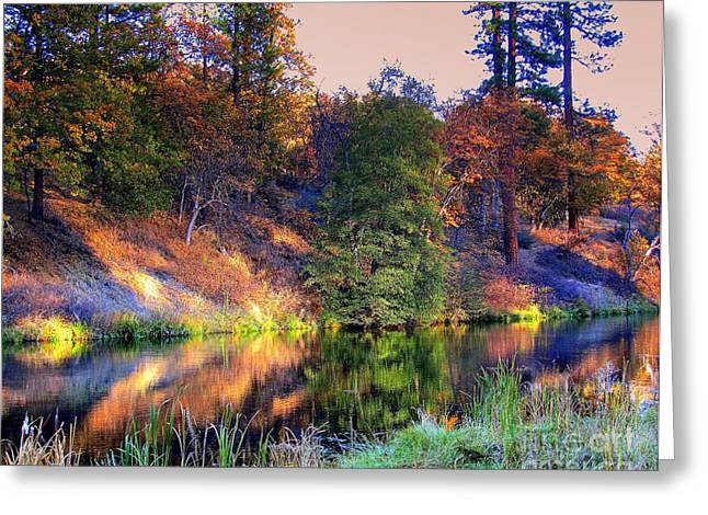 Greeting Card featuring the photograph Fall River by Irina Hays