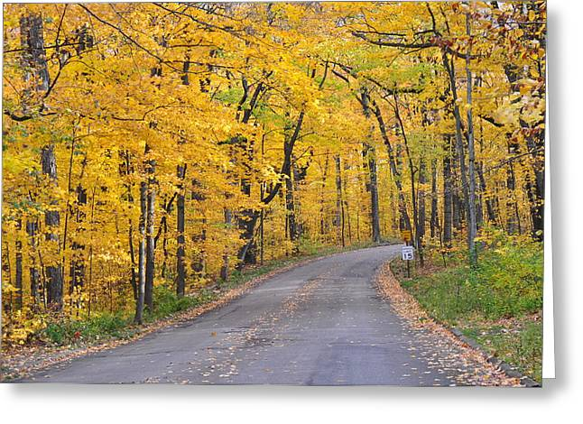 Fall Road 2 Greeting Card by Tina Jones