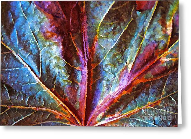 Fall Up Close Greeting Card by Gwyn Newcombe