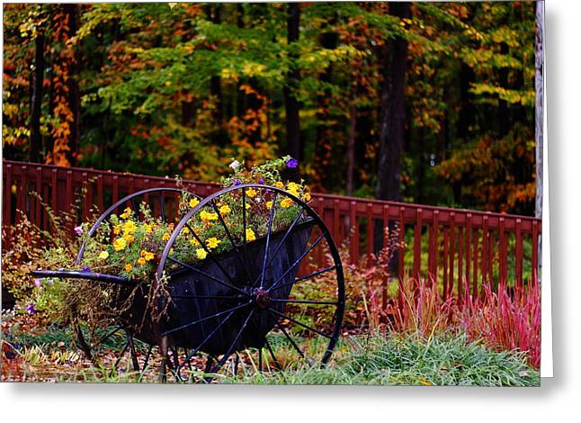 Fall Wagon Greeting Card by Kevin Schrader