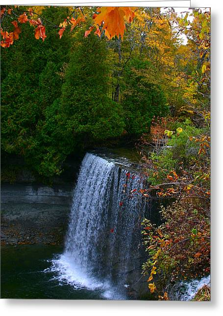 Fall Waterfall Greeting Card by Shirley Mailloux