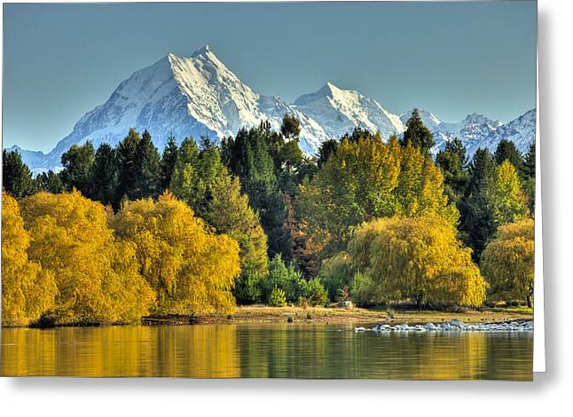 Fall Willow And Cottonwoods At Lake Greeting Card by Colin Monteath