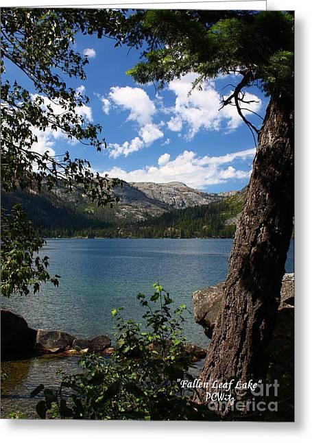 Fallen Leaf Lake Greeting Card by Patrick Witz
