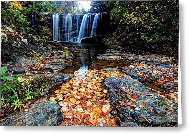 Fallen Leaves Greeting Card by Doug McPherson