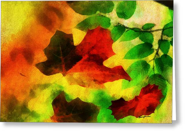 Falling Leaves Greeting Card by Anthony Caruso