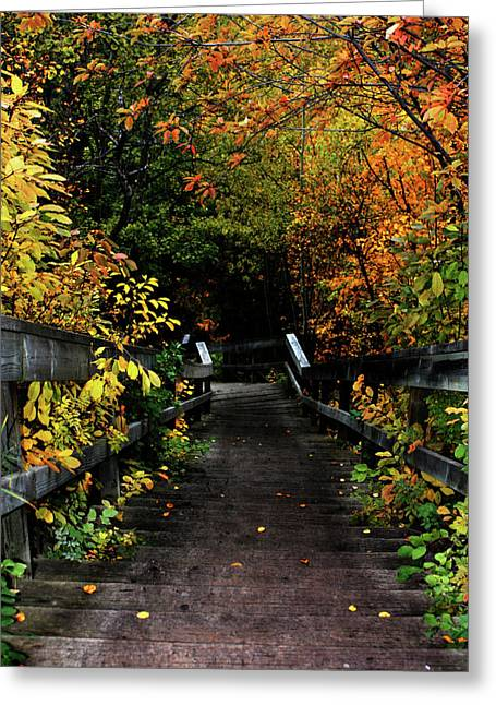 Falling Step Greeting Card by Jerry Cordeiro