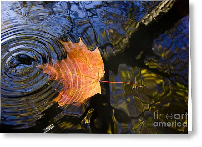 Falling To The Water Greeting Card by Michal Boubin