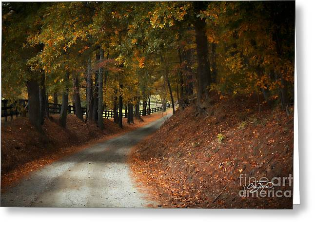 Fall's Fast Arrival Greeting Card