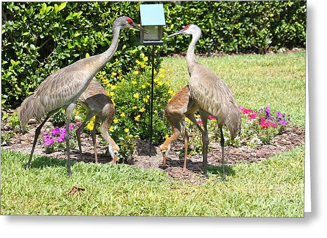 Family Meal Time Greeting Card by Carol Groenen