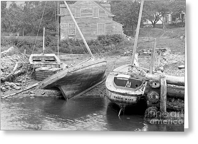 Family Wharf At Kittery Point In Maine 1900 Greeting Card by Padre Art