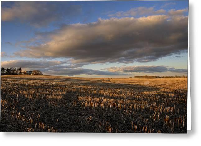 Farm And Stubble In Fall Greeting Card by Dan Jurak