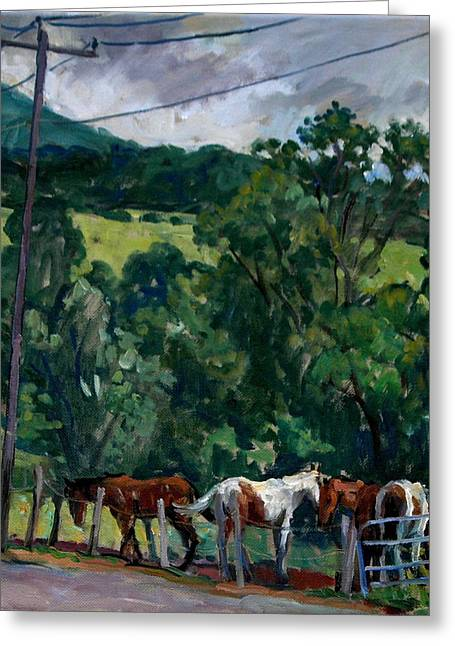 Farm Horses Berkshires Greeting Card by Thor Wickstrom
