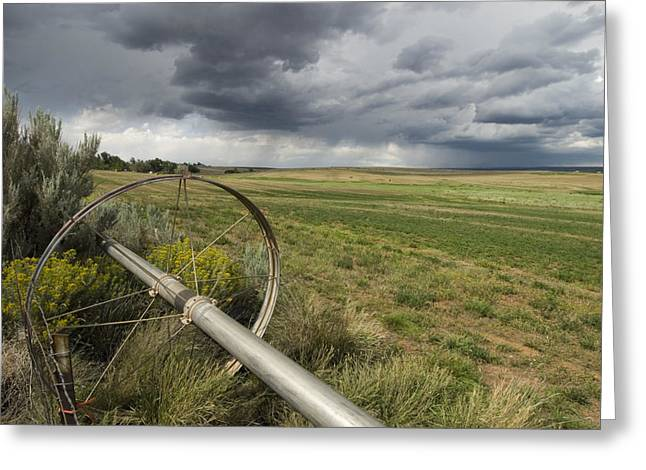 Farm Irrigation Sprinklers Next Greeting Card