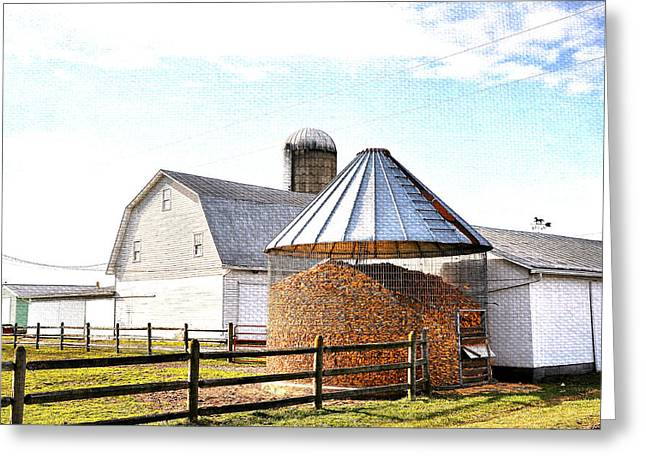 Farm Life Greeting Card by Todd Hostetter