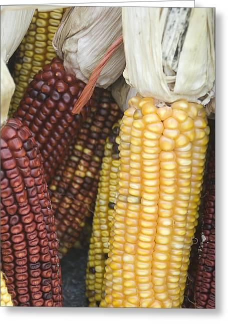 Farmers Market - 010 Greeting Card