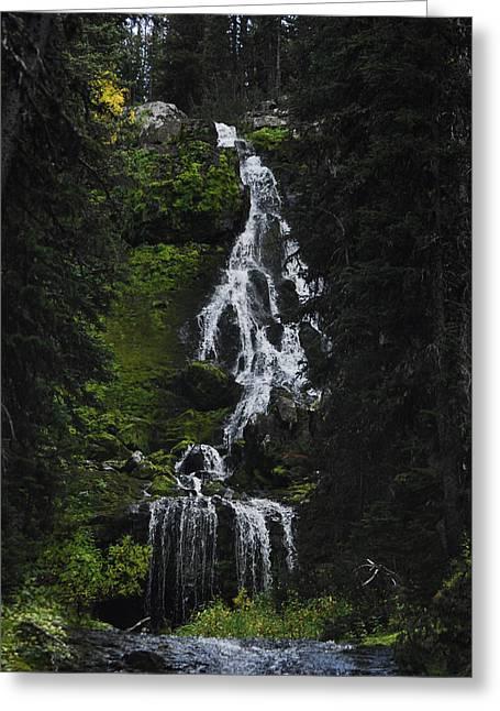 Favorite Falls Greeting Card by Arlyn Petrie
