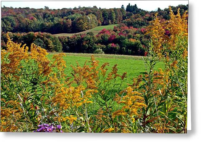 Greeting Card featuring the photograph Feast Of Autumn by Christian Mattison