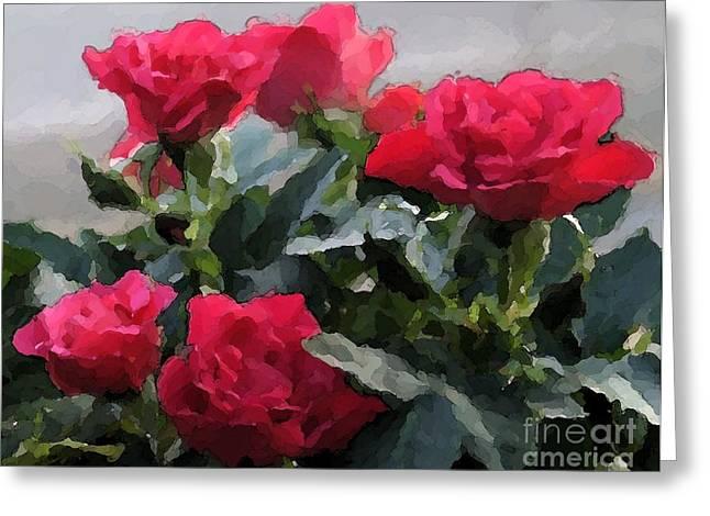 February Roses Greeting Card