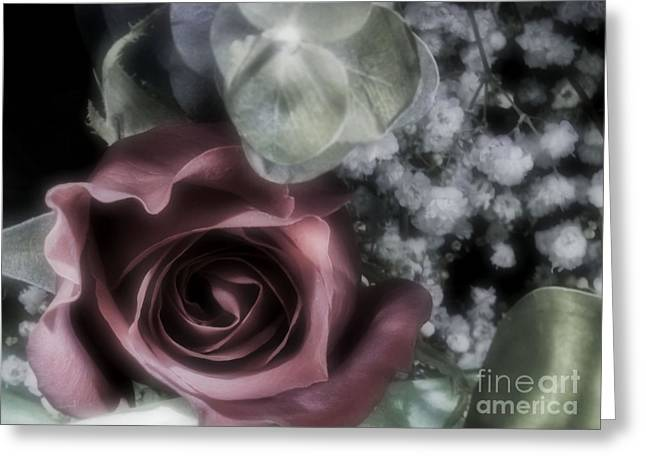 Greeting Card featuring the photograph Feel My Breath by Janie Johnson