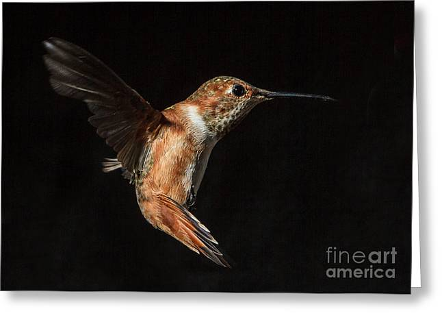 Female In Flight I Greeting Card by Carl Jackson