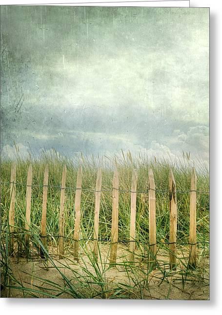 Fence Greeting Card by Joana Kruse