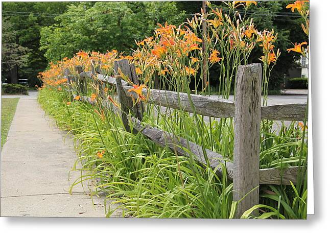 Fence Of Flowers Greeting Card