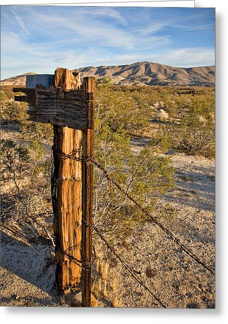 Fence Post And Barbed Wire Greeting Card by Peter Tellone