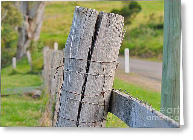 Fence Post Greeting Card by Joanne Kocwin
