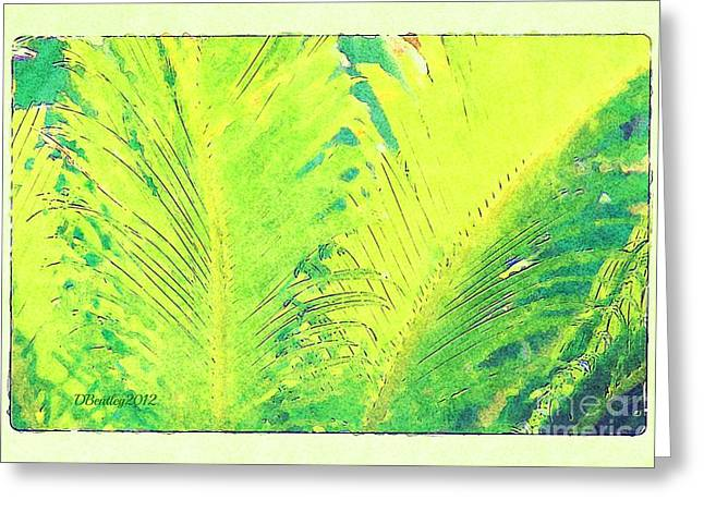 Greeting Card featuring the photograph Ferns by Donna Bentley