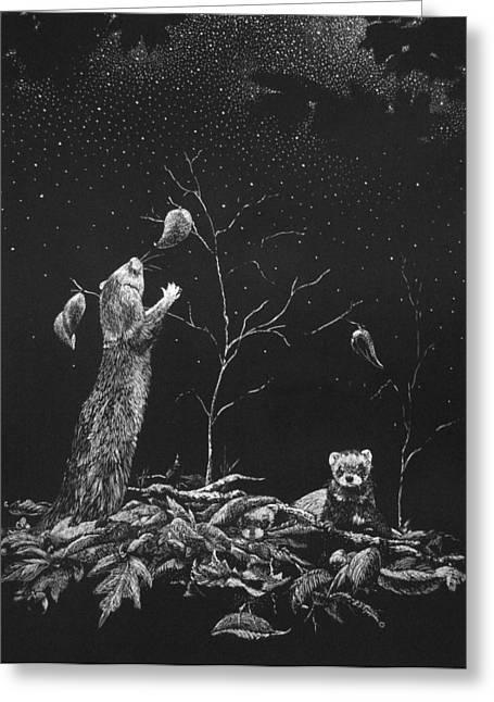 Ferret Dreams Greeting Card