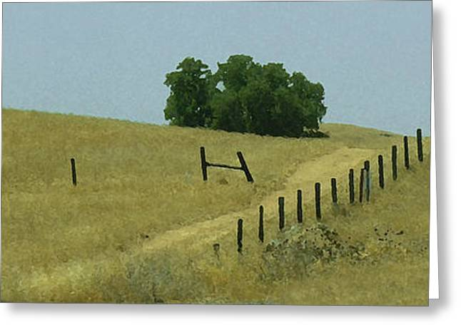Field Fence Greeting Card
