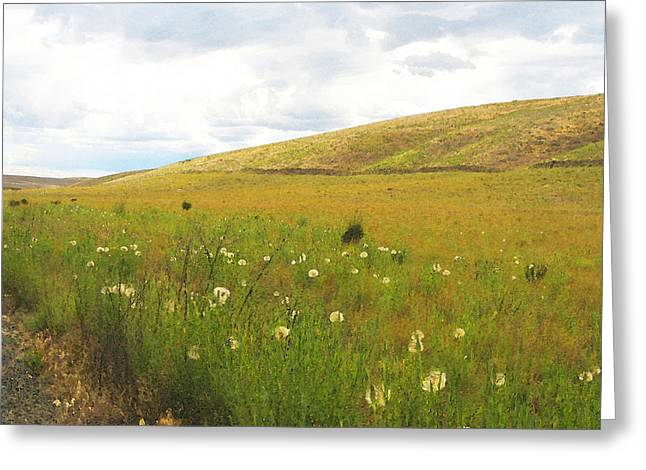 Field Of Dandelions Greeting Card by Anne Mott