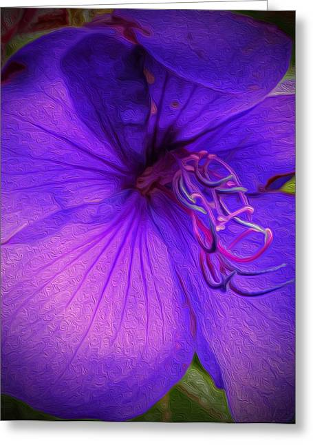 Field Of Purple Greeting Card by Jeanean Gendron